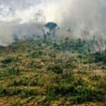 L'Amazzonia riguarda tutti